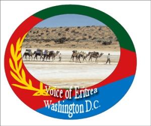 voe_camel_image_flag